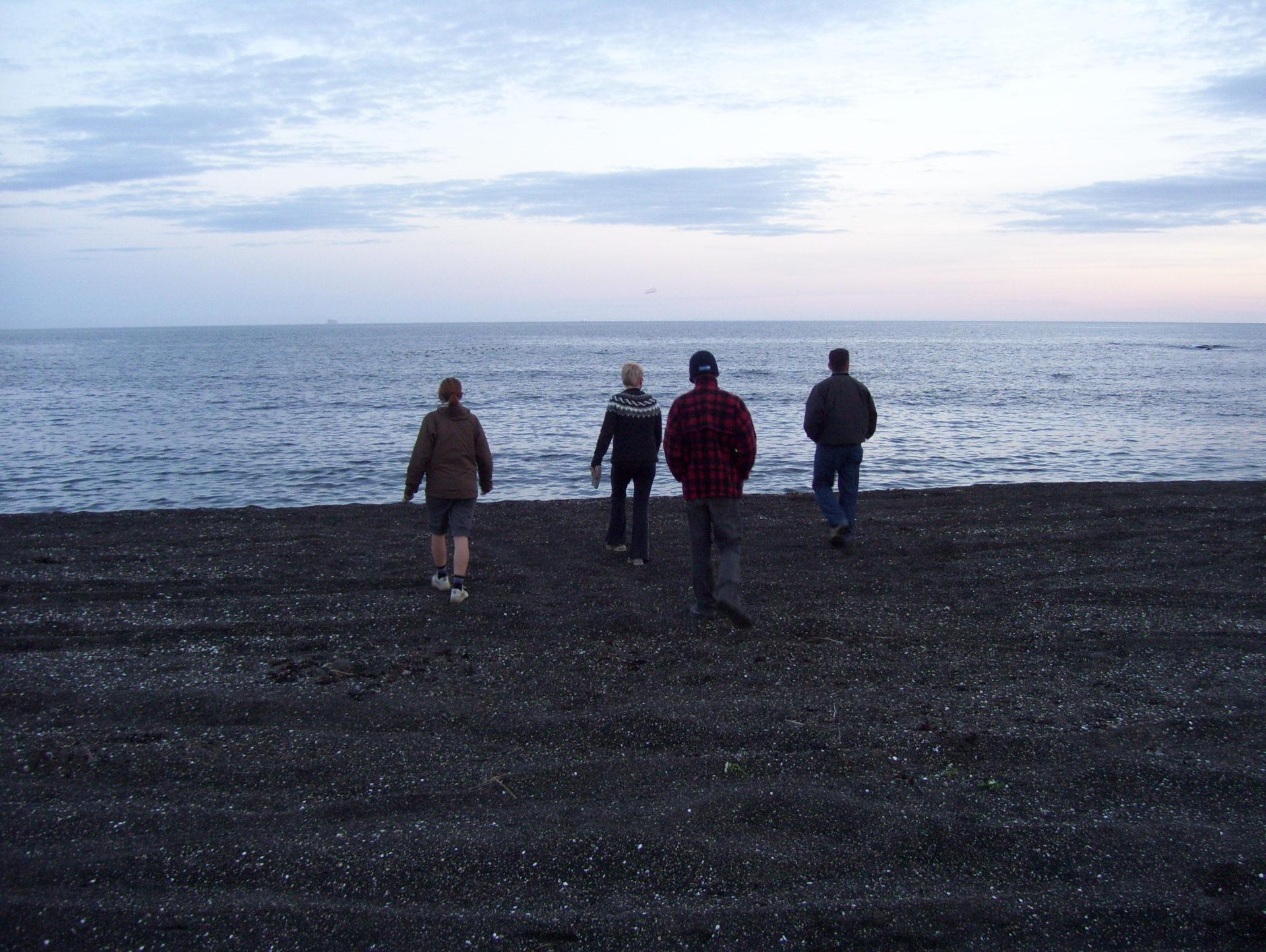 Black Sand Beach Near Grindavik Iceland The Incredibly